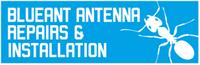 Blueant Antenna Repairs & Installation